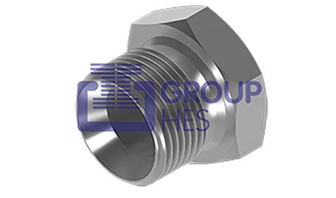 Picture of BSP Plugs 60° Coned